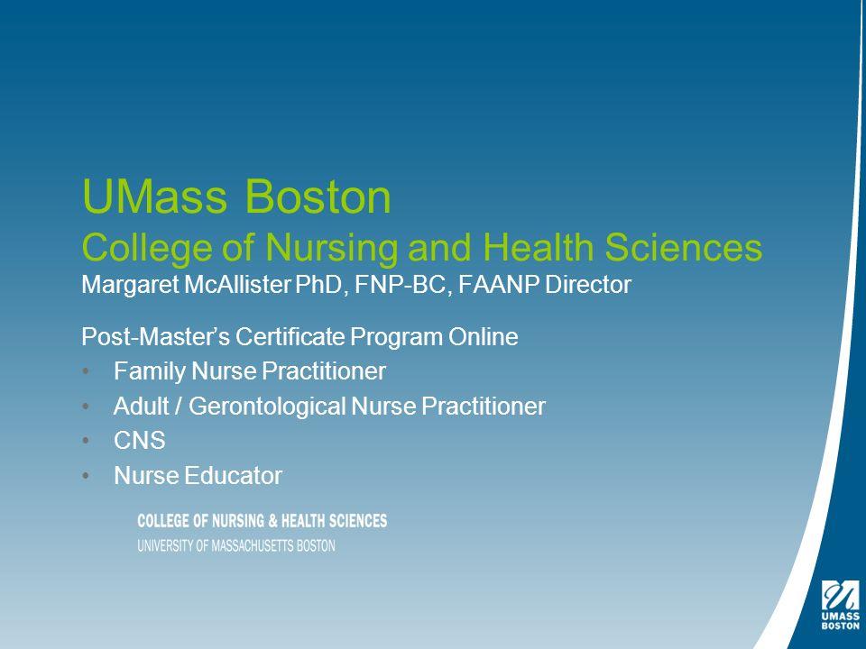 Phd nursing online