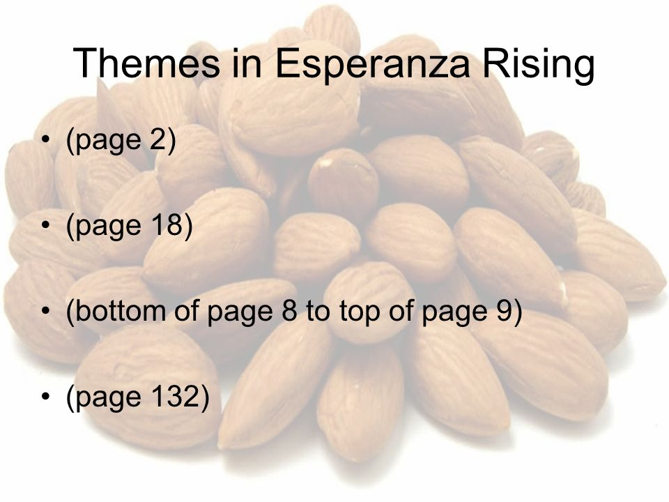 Esperanza Rising Vocabulary Quizzes For Chapters 1 Thru 4
