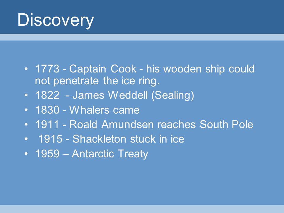roald amundsen south pole