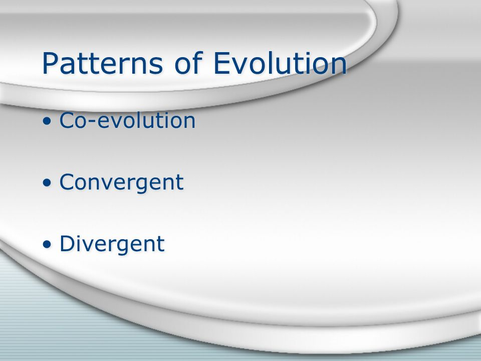Patterns of Evolution Co-evolution Convergent Divergent Co-evolution Convergent Divergent