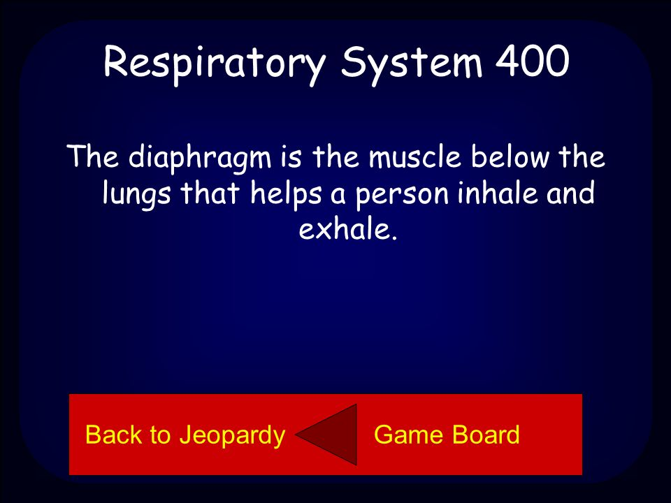 Respiratory System 400 Explain what the diaphragm is. Back to Jeopardy Game Board