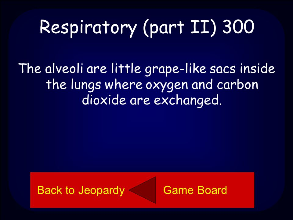 Respiratory (part II) 300 Explain what alveoli are and what they do. Back to Jeopardy Game Board