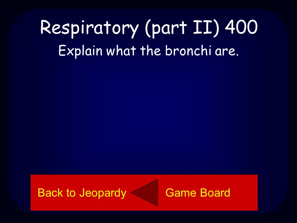 Respiratory (part II) 300 The alveoli are little grape-like sacs inside the lungs where oxygen and carbon dioxide are exchanged.