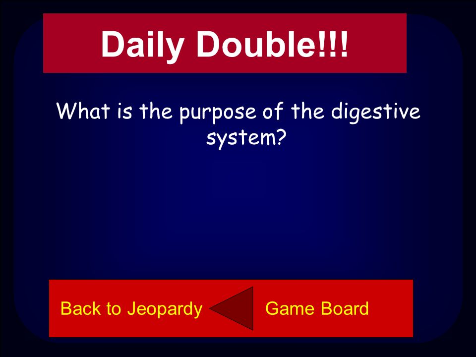 Digestive System 200 Stomach Back to Jeopardy Game Board