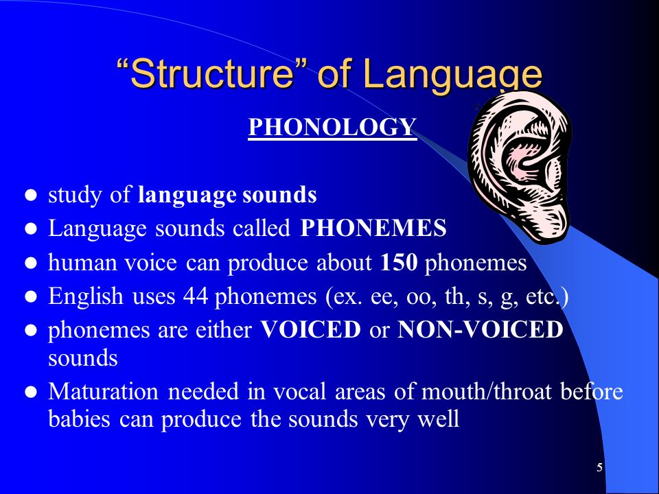 4 The Structure of Language 5 major components ( structures ) of language : 1.
