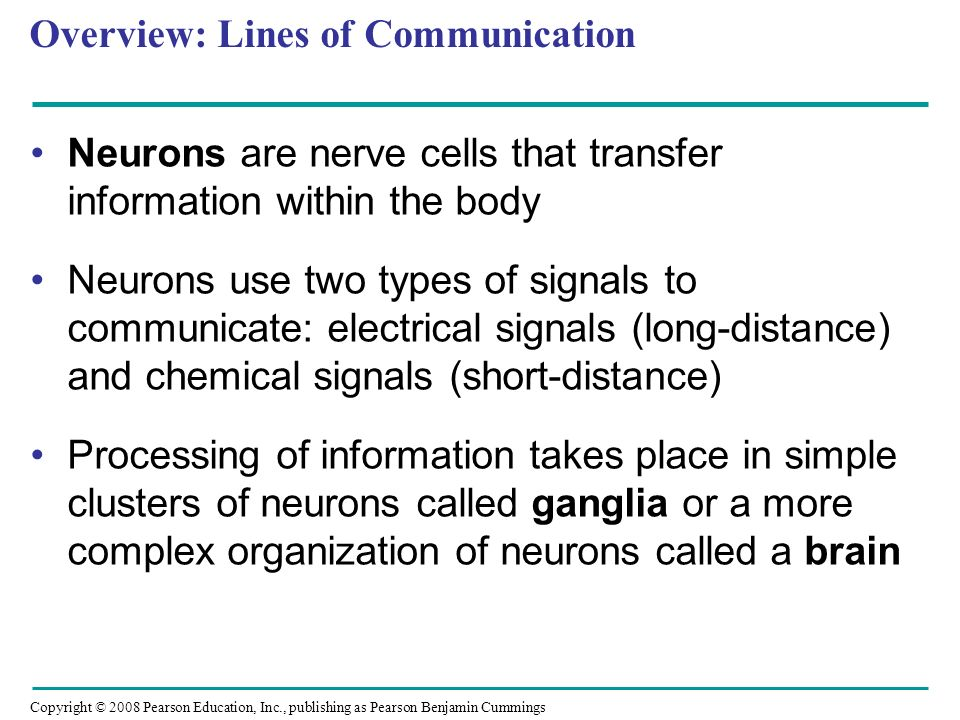 Copyright © 2008 Pearson Education, Inc., publishing as Pearson Benjamin Cummings Overview: Lines of Communication Neurons are nerve cells that transfer information within the body Neurons use two types of signals to communicate: electrical signals (long-distance) and chemical signals (short-distance) Processing of information takes place in simple clusters of neurons called ganglia or a more complex organization of neurons called a brain