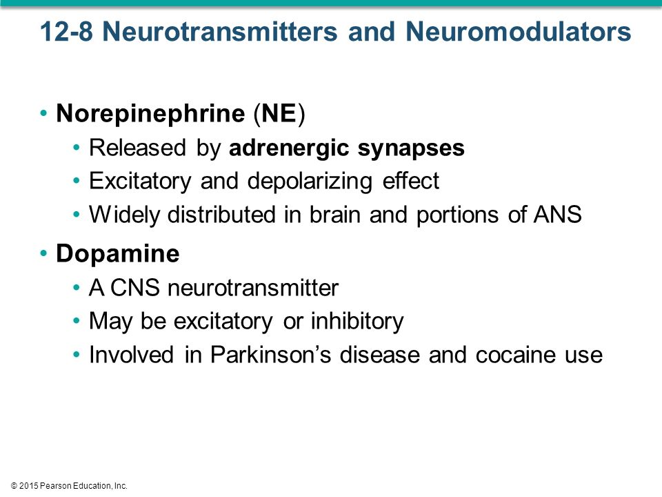 12-8 Neurotransmitters and Neuromodulators Norepinephrine (NE) Released by adrenergic synapses Excitatory and depolarizing effect Widely distributed in brain and portions of ANS Dopamine A CNS neurotransmitter May be excitatory or inhibitory Involved in Parkinson's disease and cocaine use © 2015 Pearson Education, Inc.