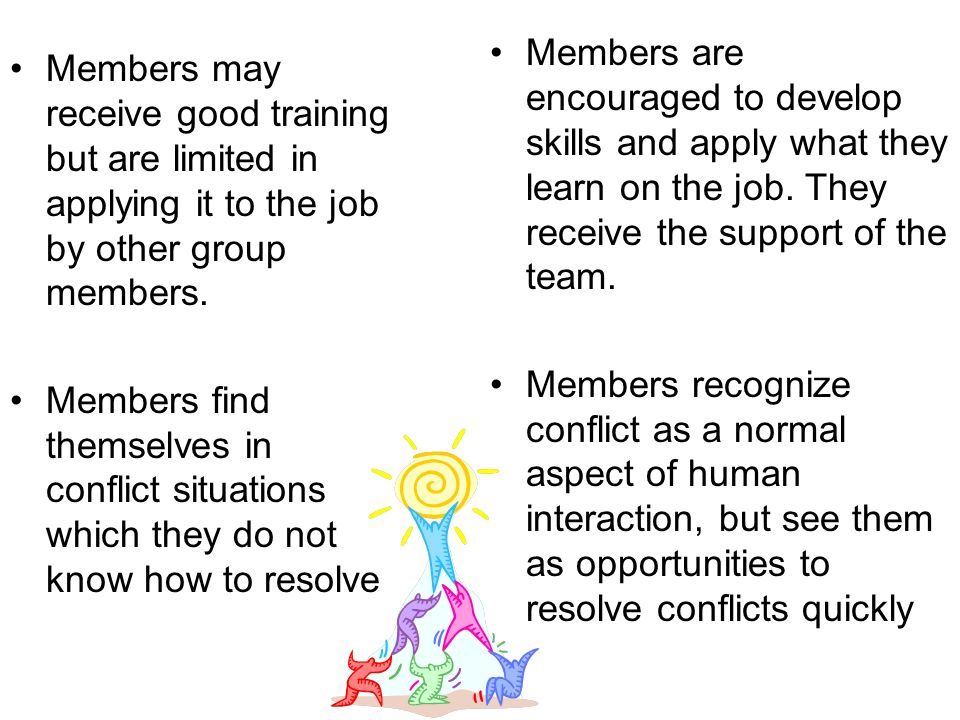 Members may or may not participate in decisions affecting the team.