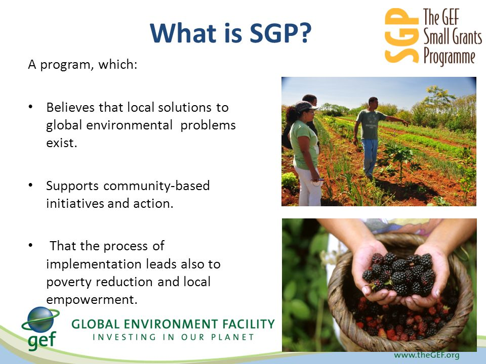 What is SGP.