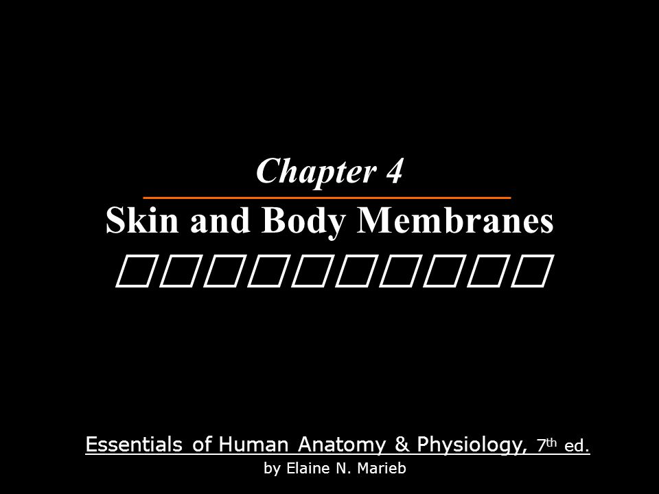 Essentials of Human Anatomy & Physiology, 7 th ed. by Elaine N ...