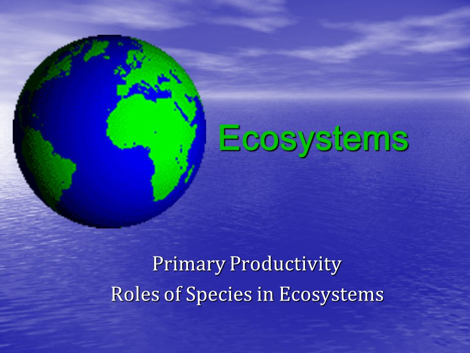Ecosystems Primary Productivity Roles of Species in Ecosystems