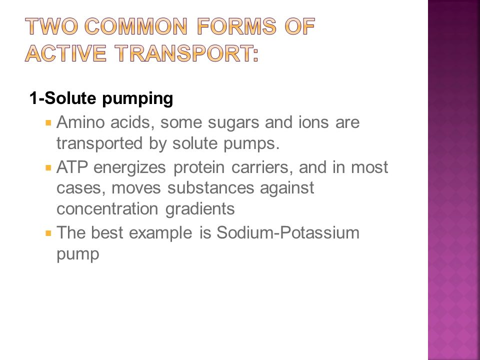 1-Solute pumping  Amino acids, some sugars and ions are transported by solute pumps.