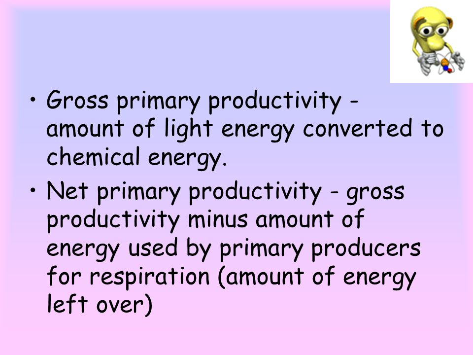 Gross primary productivity - amount of light energy converted to chemical energy.