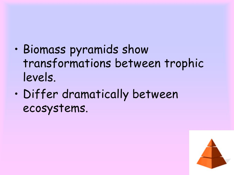 Biomass pyramids show transformations between trophic levels.