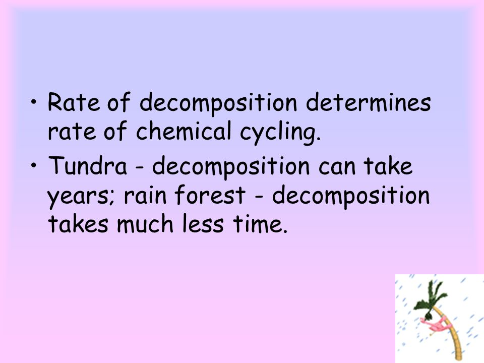 Rate of decomposition determines rate of chemical cycling.