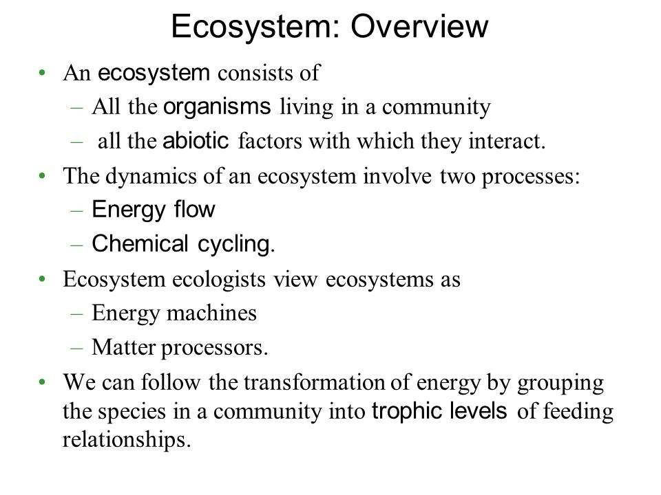 Ecosystem: Overview An ecosystem consists of –All the organisms living in a community – all the abiotic factors with which they interact.