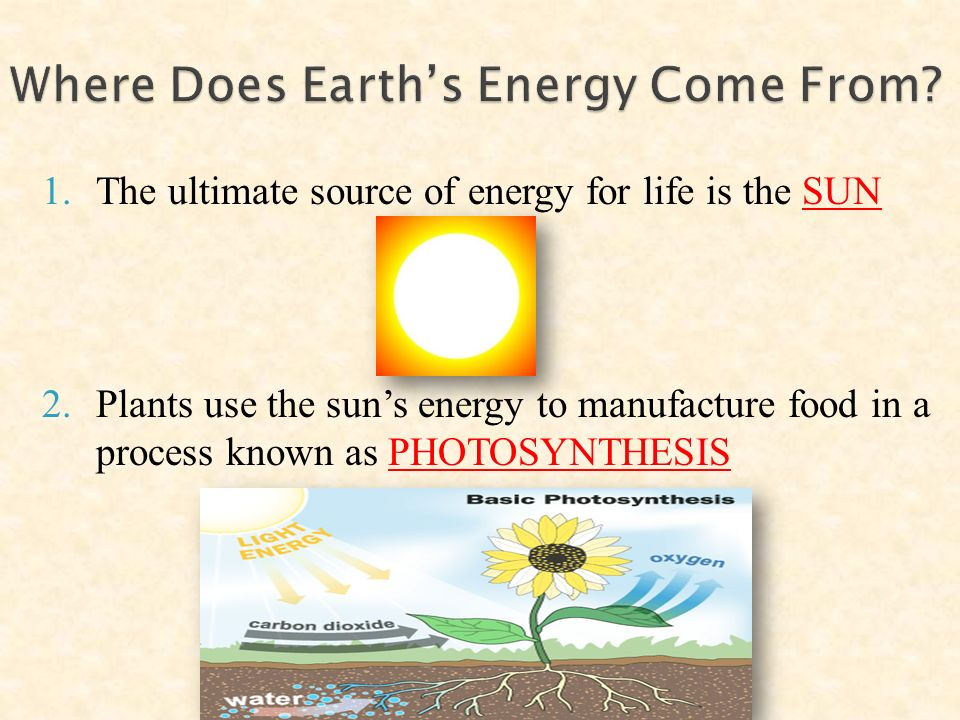 1.The ultimate source of energy for life is the SUN 2.Plants use the sun's energy to manufacture food in a process known as PHOTOSYNTHESIS