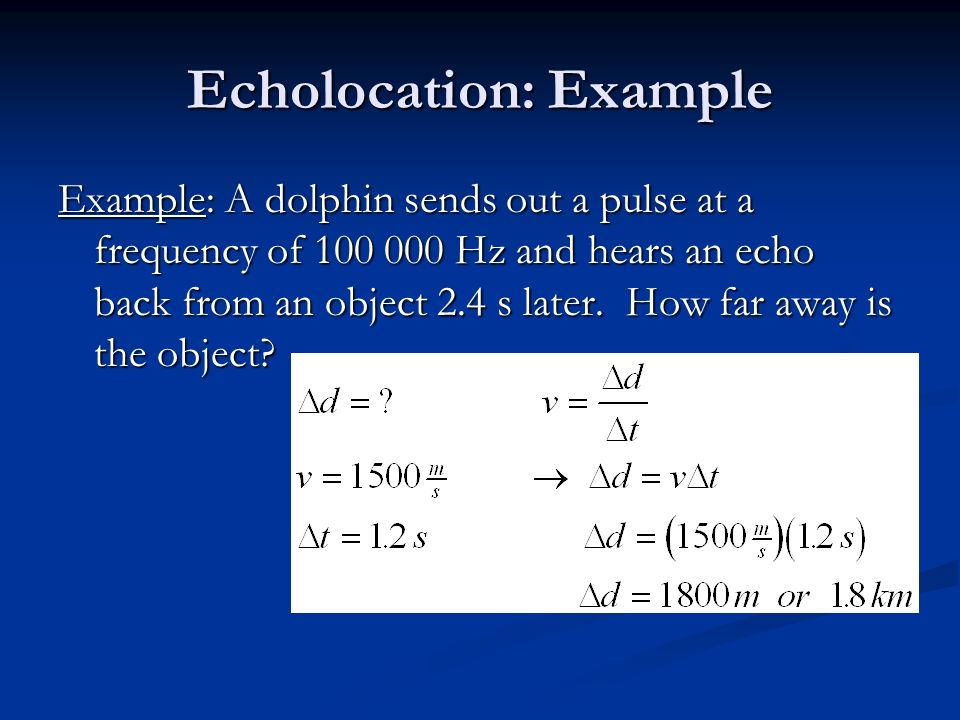 Echolocation: Example Example: A dolphin sends out a pulse at a frequency of Hz and hears an echo back from an object 2.4 s later.