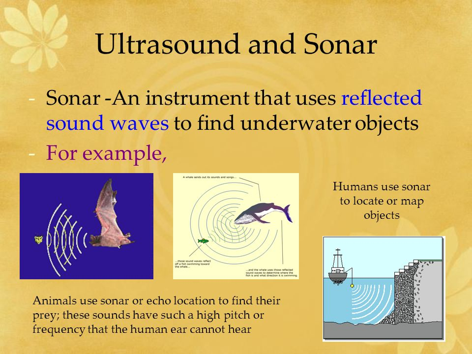 Ultrasound and Sonar Infrasound – sounds with frequencies below the normal human range of hearing.