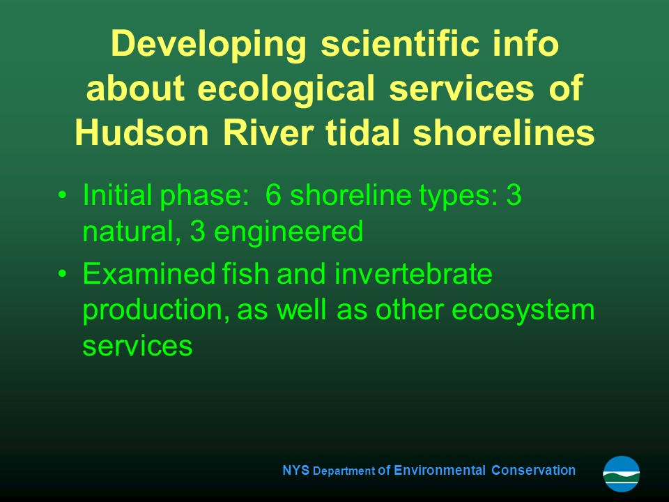 NYS Department of Environmental Conservation Developing scientific info about ecological services of Hudson River tidal shorelines Initial phase: 6 shoreline types: 3 natural, 3 engineered Examined fish and invertebrate production, as well as other ecosystem services