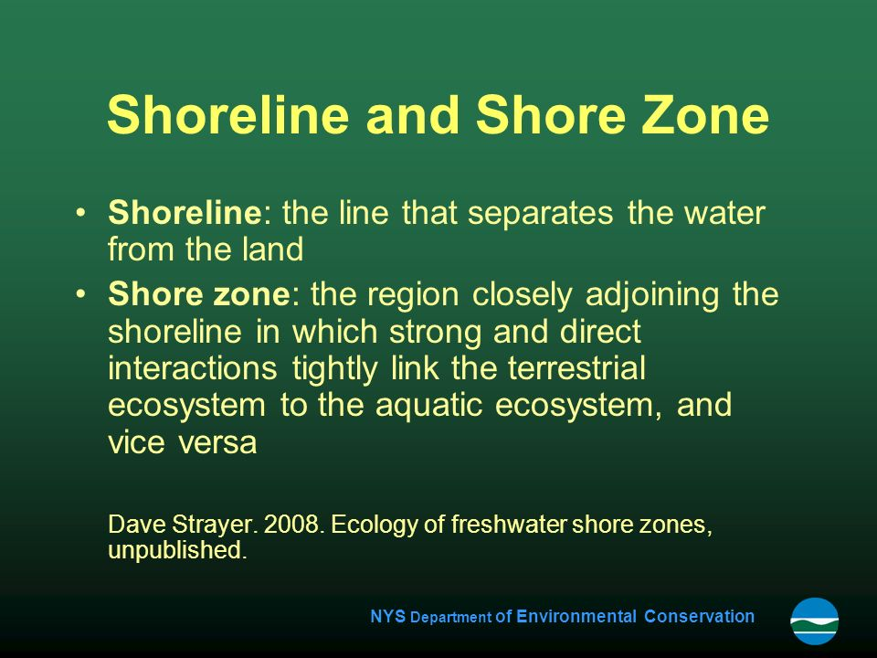 NYS Department of Environmental Conservation Shoreline and Shore Zone Shoreline: the line that separates the water from the land Shore zone: the region closely adjoining the shoreline in which strong and direct interactions tightly link the terrestrial ecosystem to the aquatic ecosystem, and vice versa Dave Strayer.