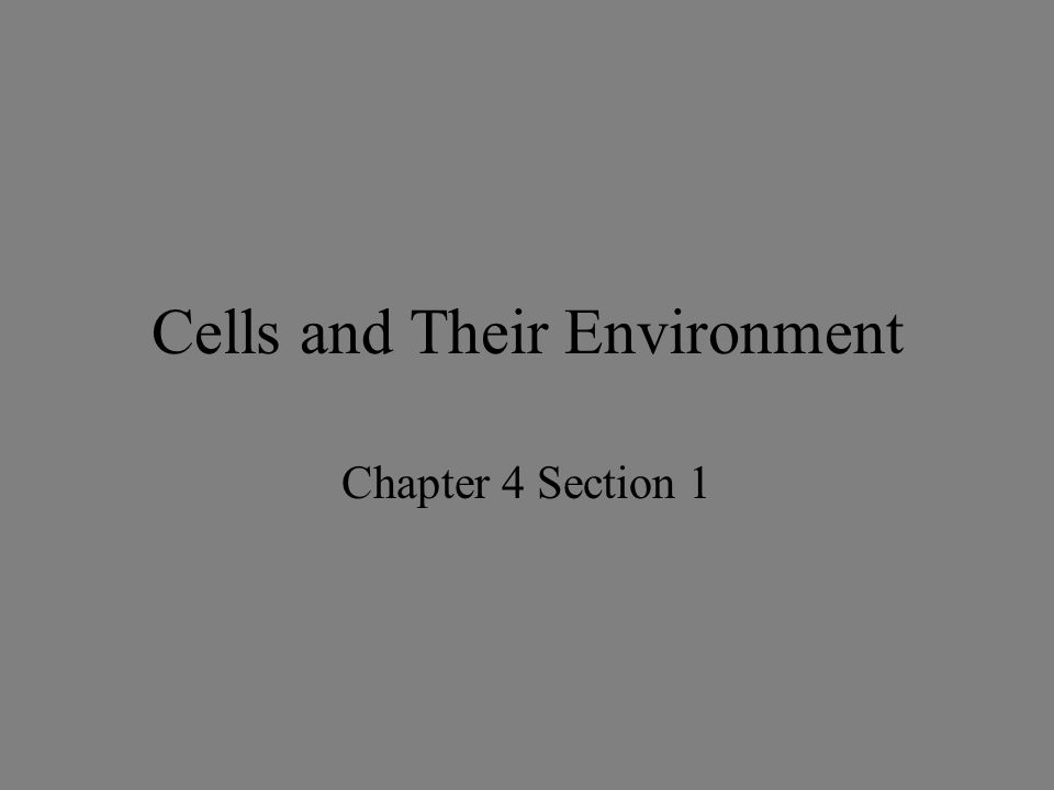 Cells and Their Environment Chapter 4 Section 1