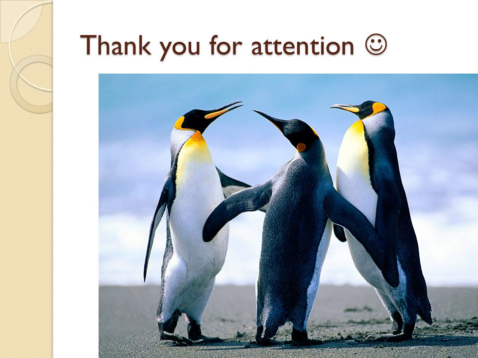 Thank you for attention Thank you for attention