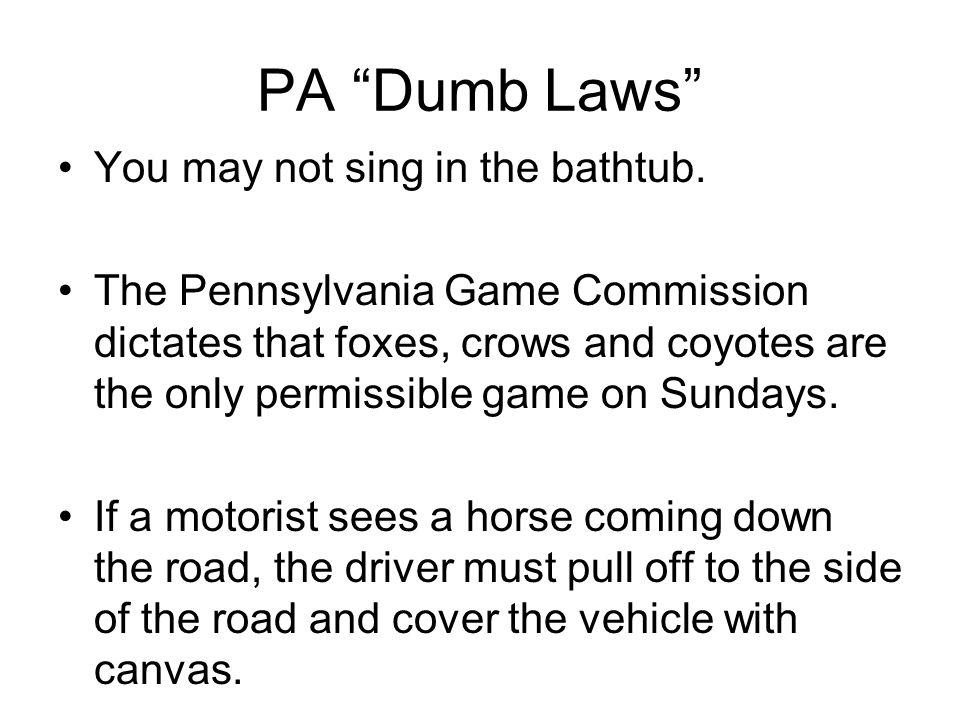 Dumb pa laws