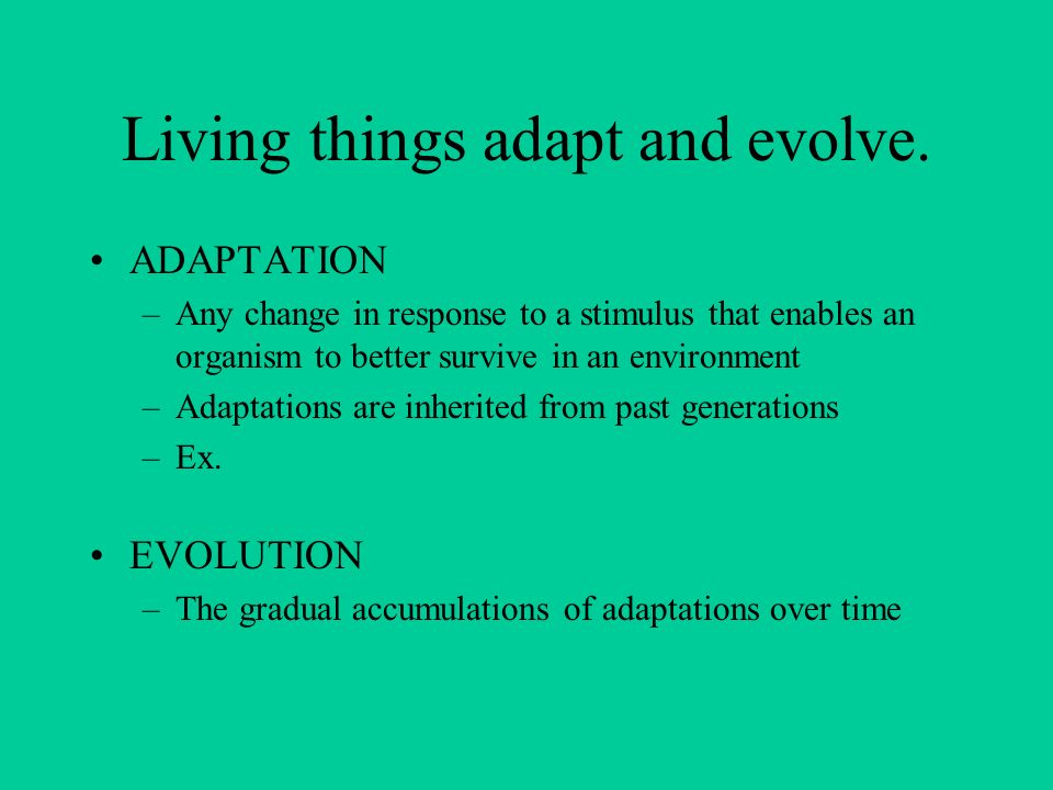 Living things adapt and evolve.