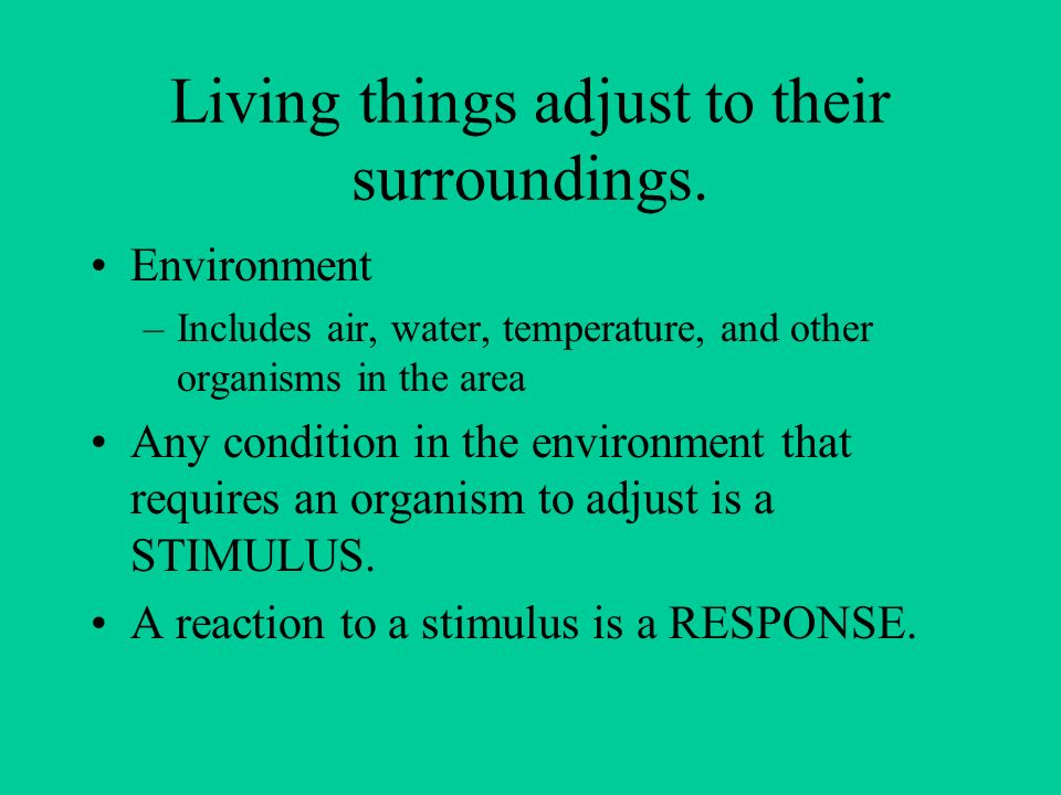 Living things adjust to their surroundings.