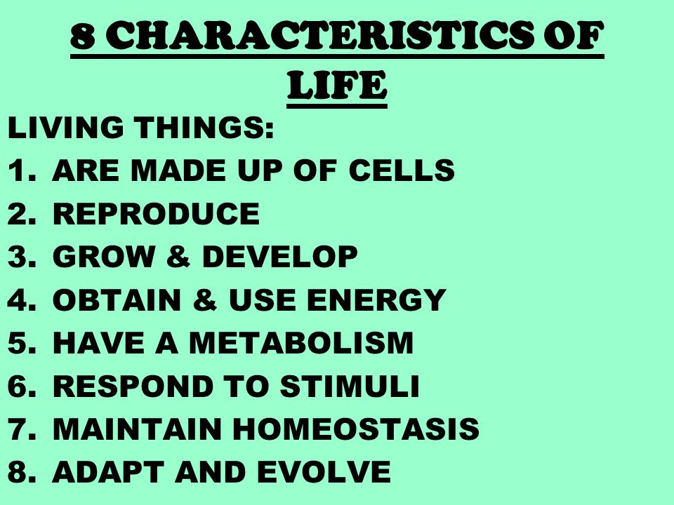 Characteristics Of Life 8 Major Traits That All Living Things Share