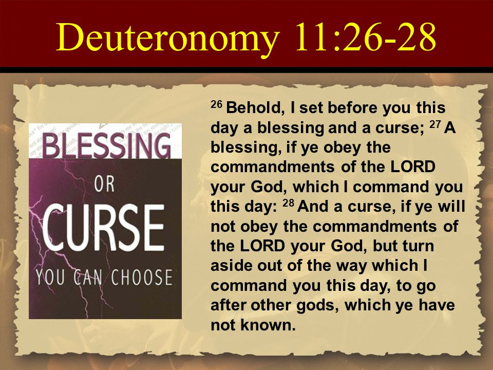 Blessing Or Curse You Can Choose Kindle Edition By