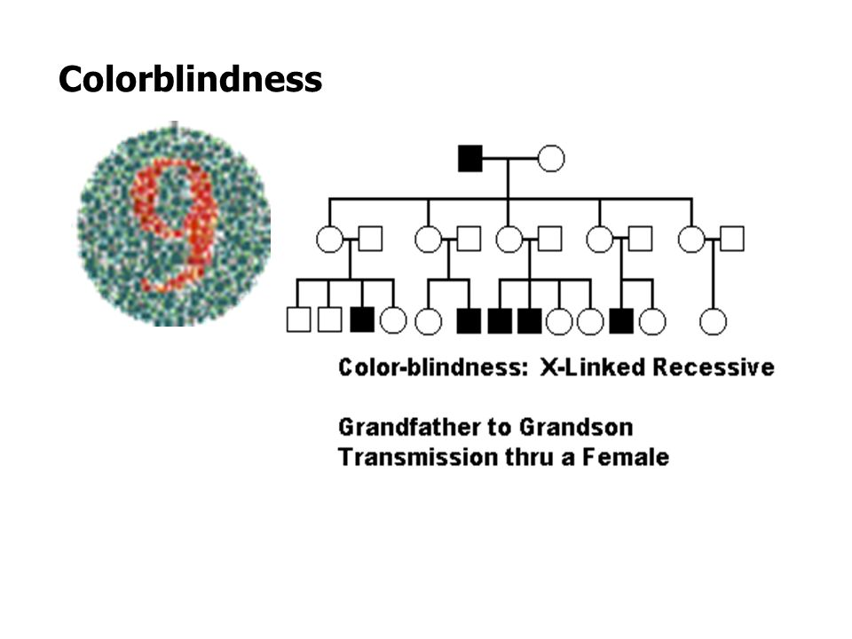 Sex-Linked Disorders Genotypes for sex-linked traits are written using the X and Y chromosomes to show path of inheritance.
