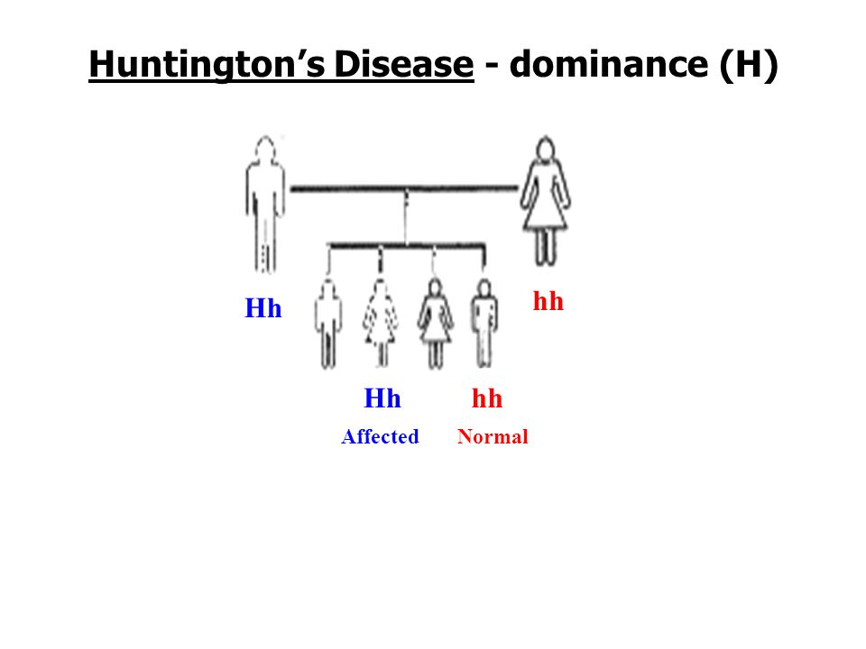 Autosomal Dominant Disorders Dominant allele disorders are less common (typically a homozygous person (HH) dies therefore the trait can t carry on to offspring).