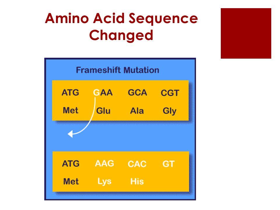 Amino Acid Sequence Changed