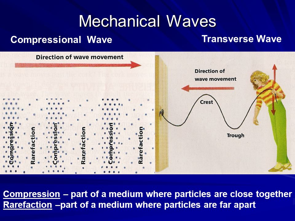 Mechanical Waves Compressional Wave Transverse Wave Compression – part of a medium where particles are close together Rarefaction –part of a medium where particles are far apart