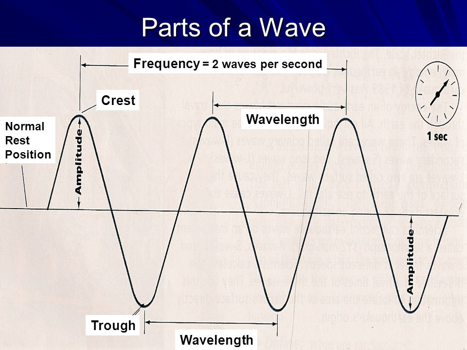Parts of a Wave Crest Wavelength Trough Normal Rest Position Frequency = 2 waves per second
