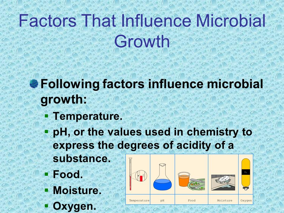 Factors That Influence Microbial Growth Following factors influence microbial growth:  Temperature.