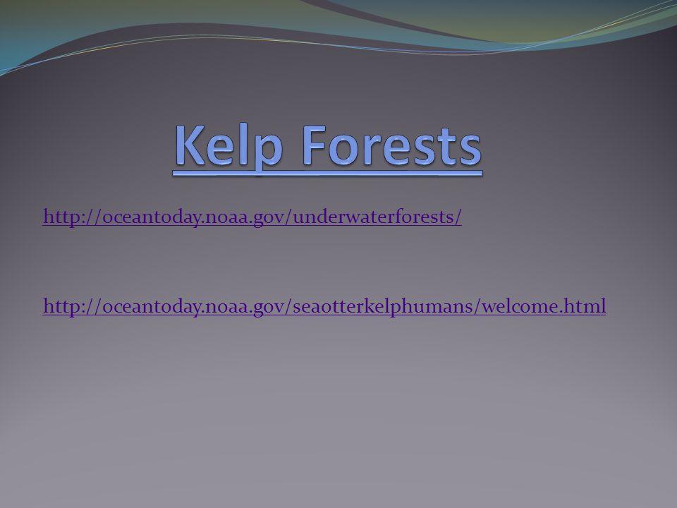 http://oceantoday.noaa.gov/underwaterforests/ http://oceantoday.noaa.gov/seaotterkelphumans/welcome.html