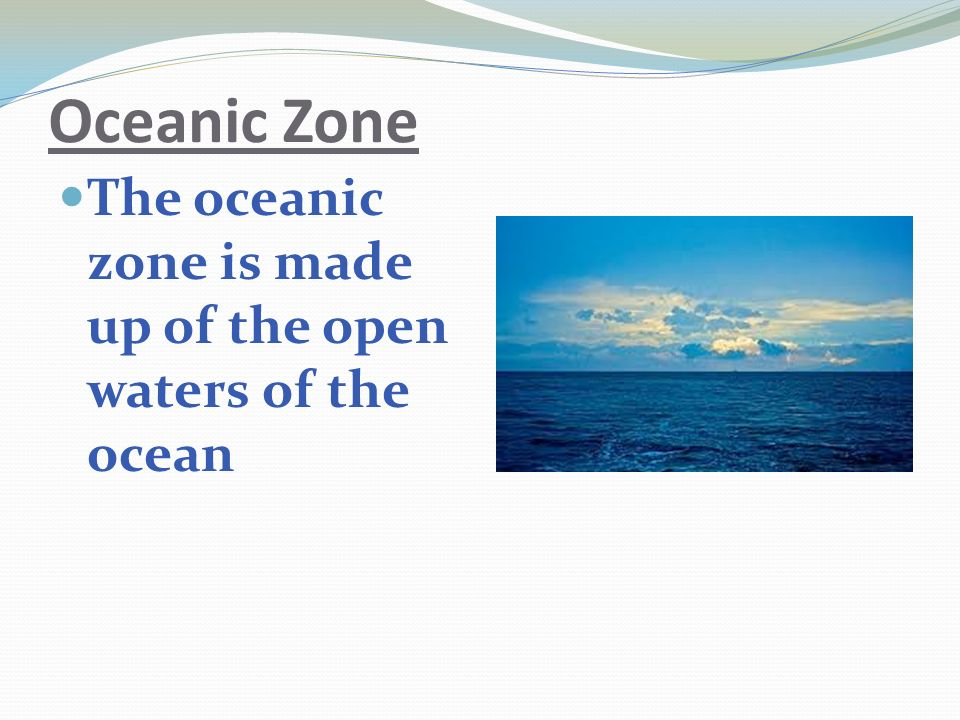 Oceanic Zone The oceanic zone is made up of the open waters of the ocean