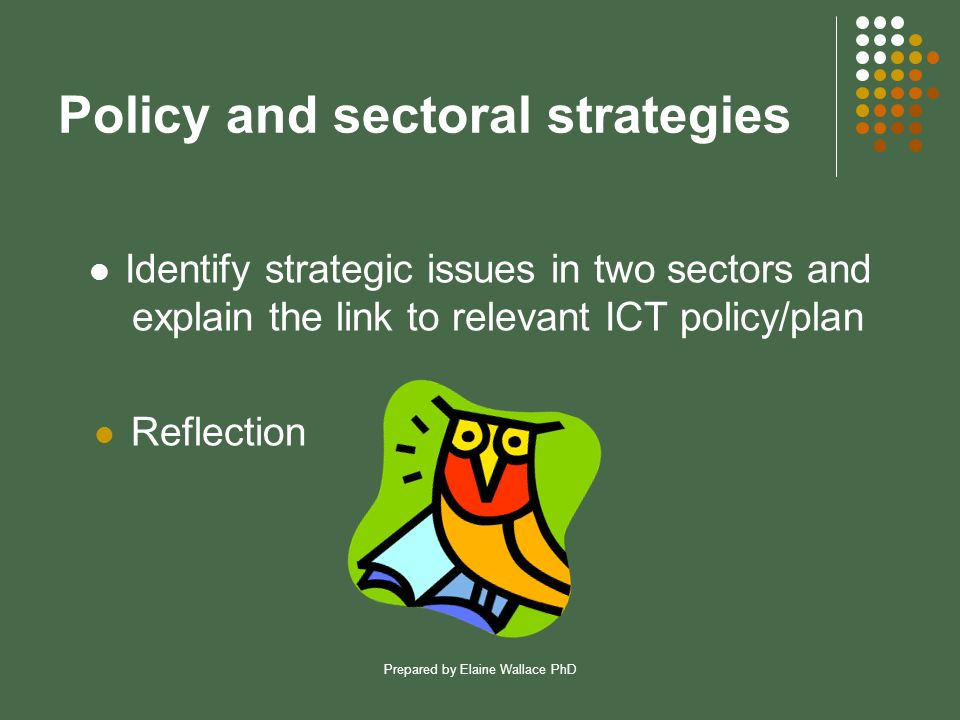 Prepared by Elaine Wallace PhD Policy and sectoral strategies Identify strategic issues in two sectors and explain the link to relevant ICT policy/plan Reflection
