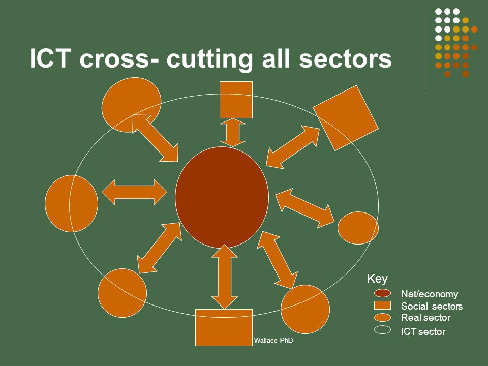 Prepared by Elaine Wallace PhD ICT cross- cutting all sectors Key Nat/economy Social sectors Real sector ICT sector