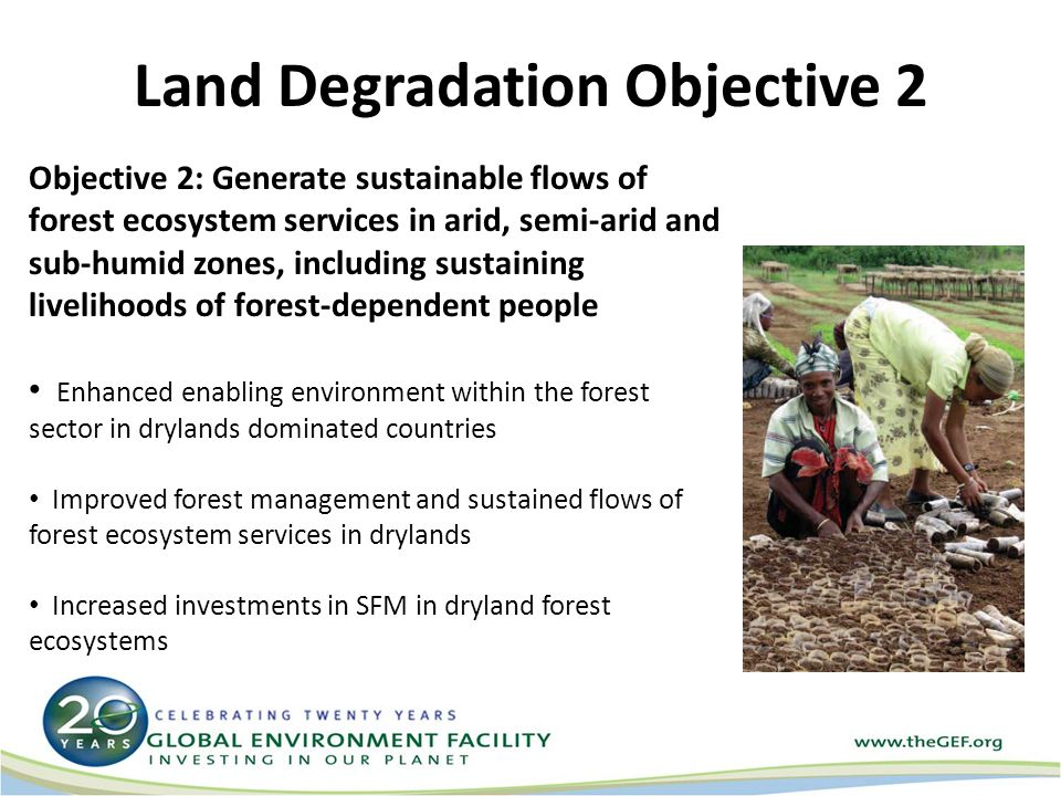 Land Degradation Objective 2 Objective 2: Generate sustainable flows of forest ecosystem services in arid, semi-arid and sub-humid zones, including sustaining livelihoods of forest-dependent people Enhanced enabling environment within the forest sector in drylands dominated countries Improved forest management and sustained flows of forest ecosystem services in drylands Increased investments in SFM in dryland forest ecosystems