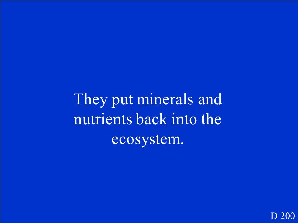 Why are decomposers a necessary part of the food chain D 200
