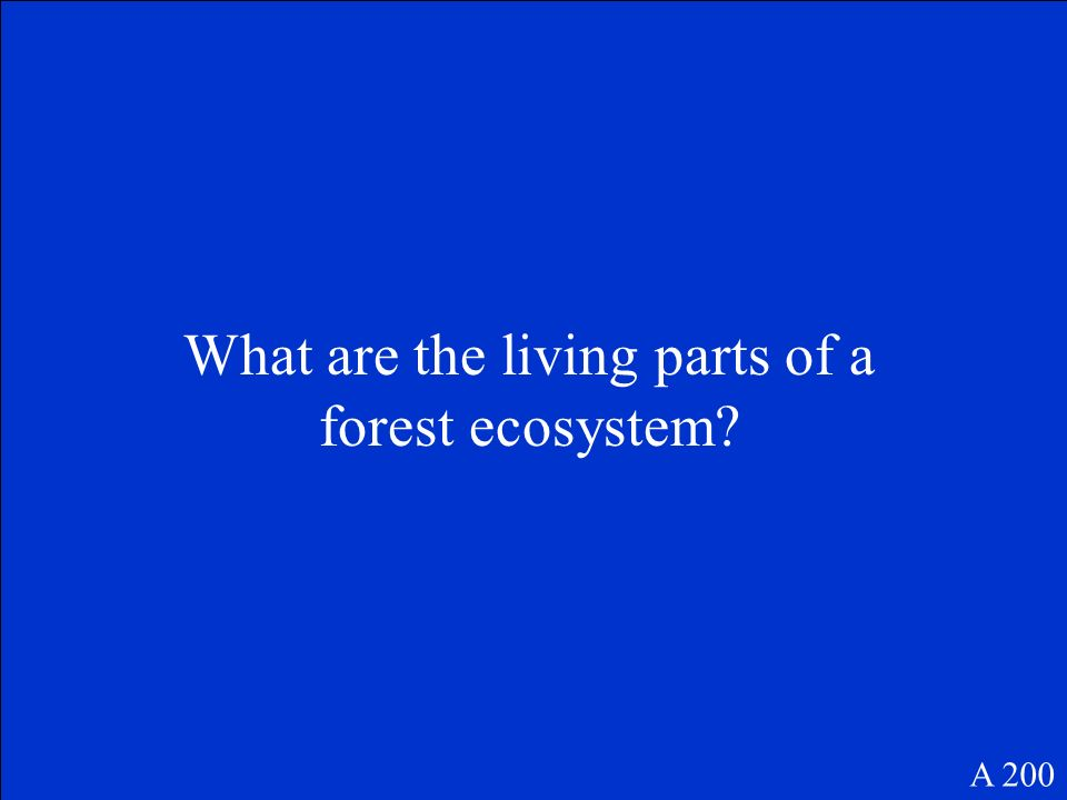 An ecosystem is made up of all the living and nonliving things in an environment and all the ways they interact.