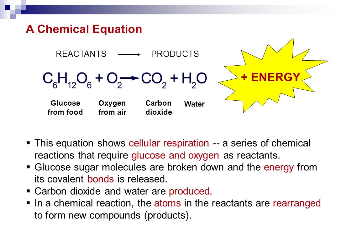  This equation shows cellular respiration -- a series of chemical reactions that require glucose and oxygen as reactants.