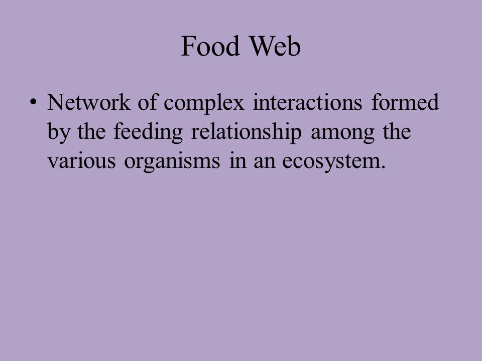Food Chain – A series of steps in which organisms transfer energy by eating and being eaten.