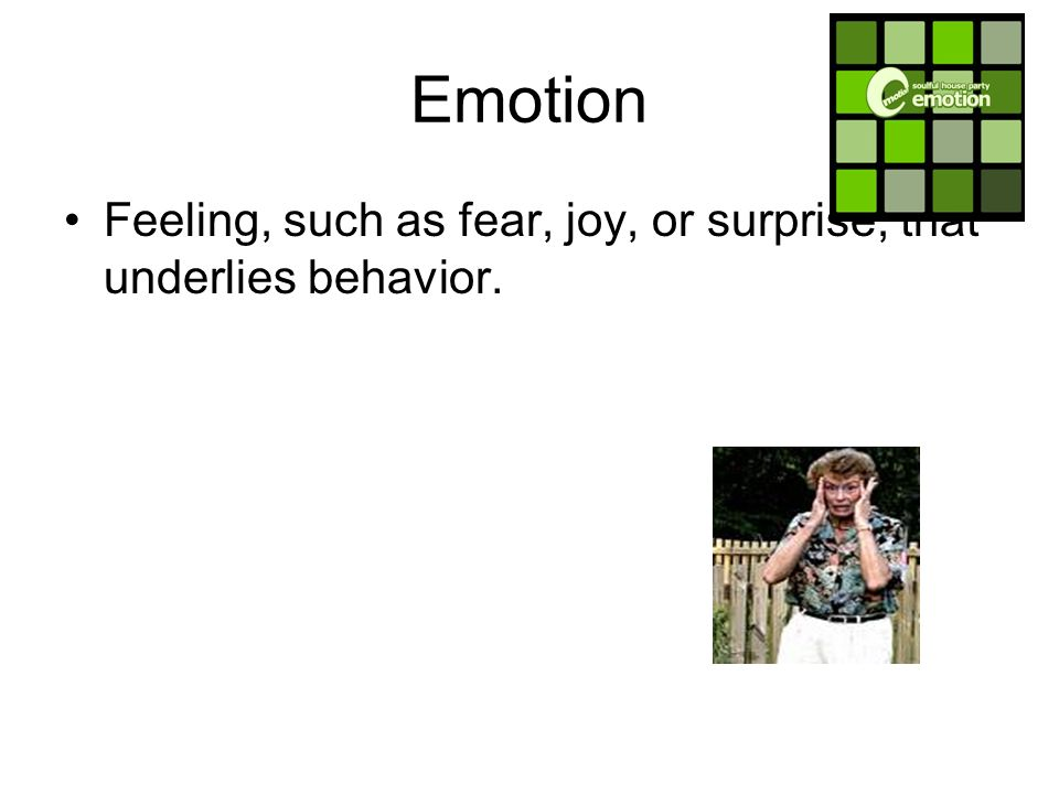 Emotion Feeling, such as fear, joy, or surprise, that underlies behavior.