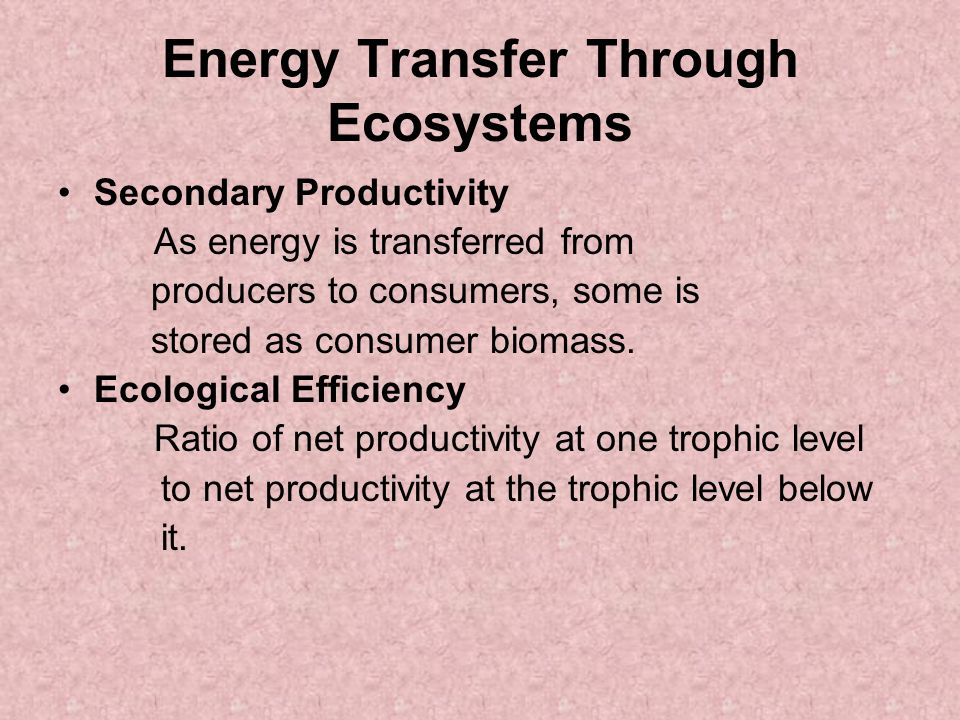 Energy Transfer Through Ecosystems Secondary Productivity As energy is transferred from producers to consumers, some is stored as consumer biomass.