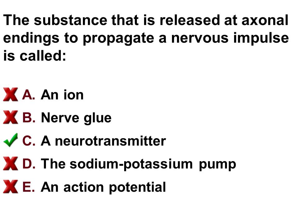 The substance that is released at axonal endings to propagate a nervous impulse is called: A.An ion B.Nerve glue C.A neurotransmitter D.The sodium-potassium pump E.An action potential